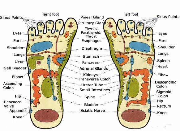 foot_reflexology_chart