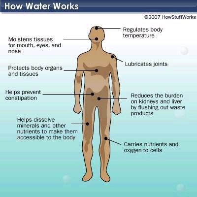 howwaterworks101