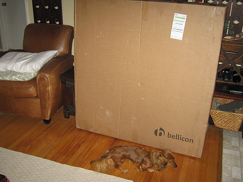 Bellicon-IMG_1952