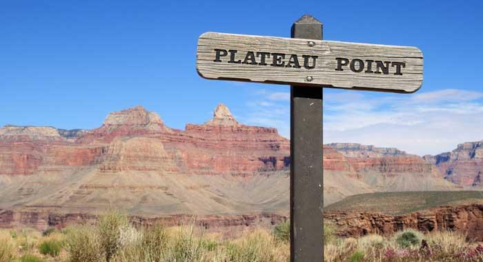 gut-healing-plateau
