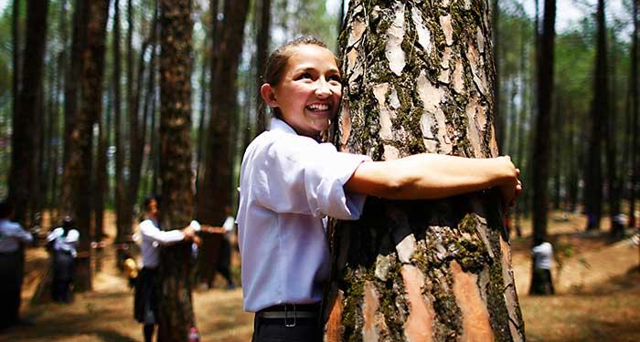 people-hugging-trees