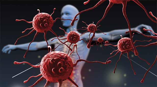 the-immune-system